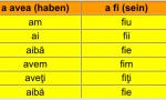 Rumaenisch Lernen – Konjunktiv Präsens 2